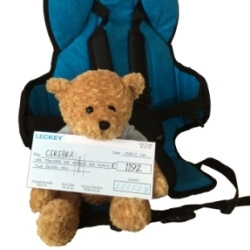 Cerebra bear and the Goto seat