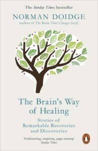 book cover brains way of healing