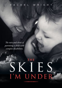 book cover the-skies-im-under