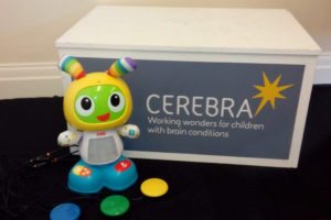 New switch toys in the Cerebra toy library.