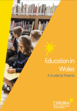 Education in Wales - A guide for prents - Cerebra the charity for children with brain conditions.