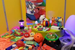 A selection of toys available from cerebra's lending library