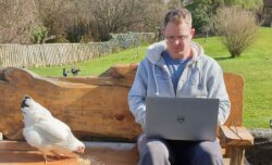 dr ross head works from home with his pet chickens